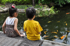 Boy and girl looking fish. In the pond stock photography