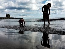 A boy and a girl looking for shells Stock Image