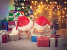 Boy and girl lying on the floor with presents near christmas tree Royalty Free Stock Photography