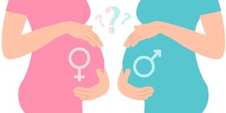 Boy or girl. Male Female Icons. Image of pregnant woman touching her big belly. Royalty Free Stock Images