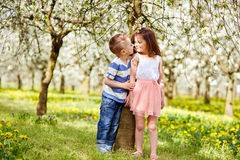 Boy and a girl in orchard Stock Images