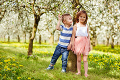 Boy and a girl in orchard Royalty Free Stock Photo