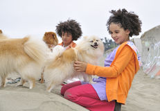 Boy and girl petting dogs at the beach Stock Image