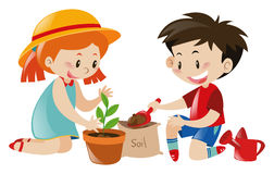 Boy and girl planting tree. Illustration Stock Photo