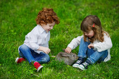 Boy and girl playing with rabbit Stock Images
