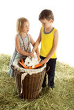 Boy and girl with rabbit Stock Image