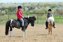 Boy and girl riding  ponies Stock Photo