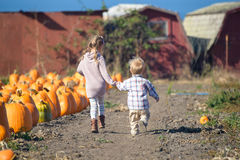 Boy and girl running to choose pumpkin at the farm Stock Photo