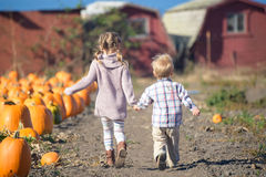 Boy and girl running to choose pumpkin at the farm Stock Photos