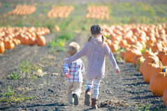 Boy and girl running to choose pumpkin at the farm Royalty Free Stock Image