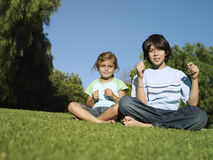Boy (10-12) and girl (6-8) sitting on grass in park, smiling, front view, portrait, surface level Stock Photography