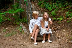 Boy and girl sitting on log in woods. Stock Photography