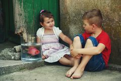 Boy and girl sitting on the street with a fish in a jar .Brother and sister see fish in the aquarium. Royalty Free Stock Image