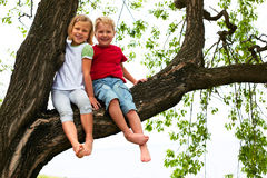 Boy and girl sitting on a tree Stock Photo