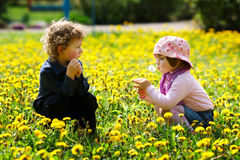 Boy and girl in summer flowers field Stock Photography