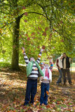 Boy and girl throwing autumn leaves in air Stock Images