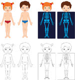 Boy and girl unclothed. Kids bodies by X-ray. Educational colori. Ng book for kids. Body parts, anatomy Royalty Free Stock Photos