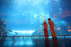 Boy and girl in underwater aquarium tunnel. Little boy and girl standing in underwater aquarium tunnel, view from back stock image