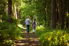 Boy with girl walking in the summer forest Royalty Free Stock Image