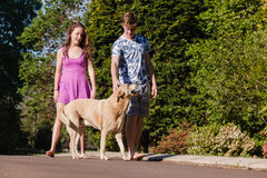 Boy Girl Walking Talking Dog Royalty Free Stock Photo