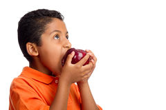 Boy Gives Big Bite to Apple. Isolated on White Background royalty free stock photography