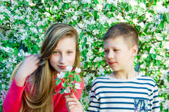 The boy gives flowers to the girl Royalty Free Stock Images
