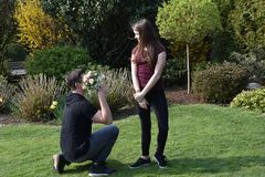 Boy gives flowers to his girlfriend. Pleasant anticipation, boy kneels in front of his girlfriend and gives her a bouquet of flowers royalty free stock photos