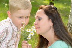 The boy gives flowers to his mother.  royalty free stock image