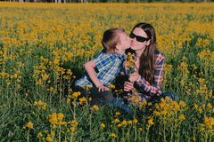 Boy gives his mother a bouquet of wild flowers and kisses her sitting on the grass among the yellow flowers. royalty free stock photography