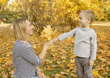 Boy gives mom autumn leaves Royalty Free Stock Photos