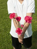 Boy giving carnation flower. Midsection of a boy holding carnation flower Royalty Free Stock Photos