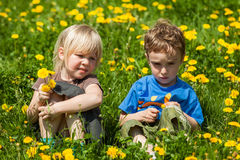 Boy giving flowers for a girl Royalty Free Stock Photos