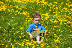 Boy giving flowers for a girl Stock Photos