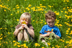 Boy giving flowers for a girl Royalty Free Stock Images