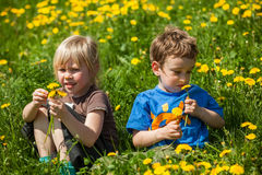 Boy giving flowers for a girl Stock Images
