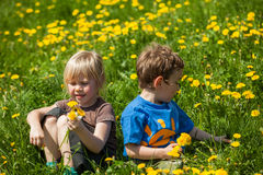 Boy giving flowers for a girl Royalty Free Stock Photo