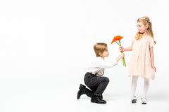 Boy giving flowers to girl Royalty Free Stock Photo