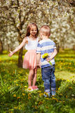Boy giving a girl a flower Stock Photography