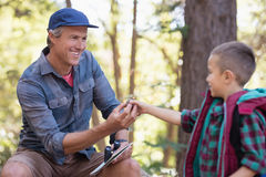 Boy giving pine cone to father in forest. Boy giving pine cone to mature father in forest Stock Photography