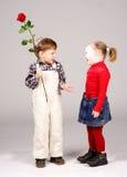 Boy giving preschool girl rose. Cute preschool boy giving happy girl red rose; studio background royalty free stock photo