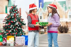 Boy Giving Present To Girl Royalty Free Stock Photography