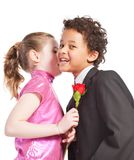 Boy giving a rose to a girl. Isolated on a white background Royalty Free Stock Photography