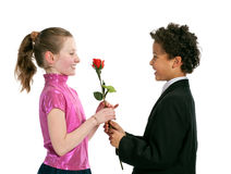 Boy giving a rose to a girl Royalty Free Stock Image