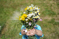 Boy giving wildflowers Stock Images