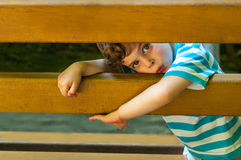 The boy glanced furtively. Three year old boy peek between the slats of the bench. Summertime Stock Image