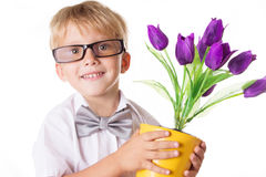 Boy in glasses and bow-tie with flowers Stock Image