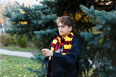 Boy in glasses stands in autumn park with gold leaves, holds wand in his hands. Harry Potter royalty free stock photo