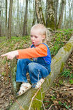 Boy goes on a log Stock Photos
