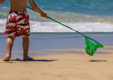 Boy going fishing. Little boy holding small green fishing net going towards the sea stock photography