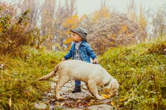 Boy with golden retriever puppy. Happy little boy walking with his golden retriever puppy in the park royalty free stock images